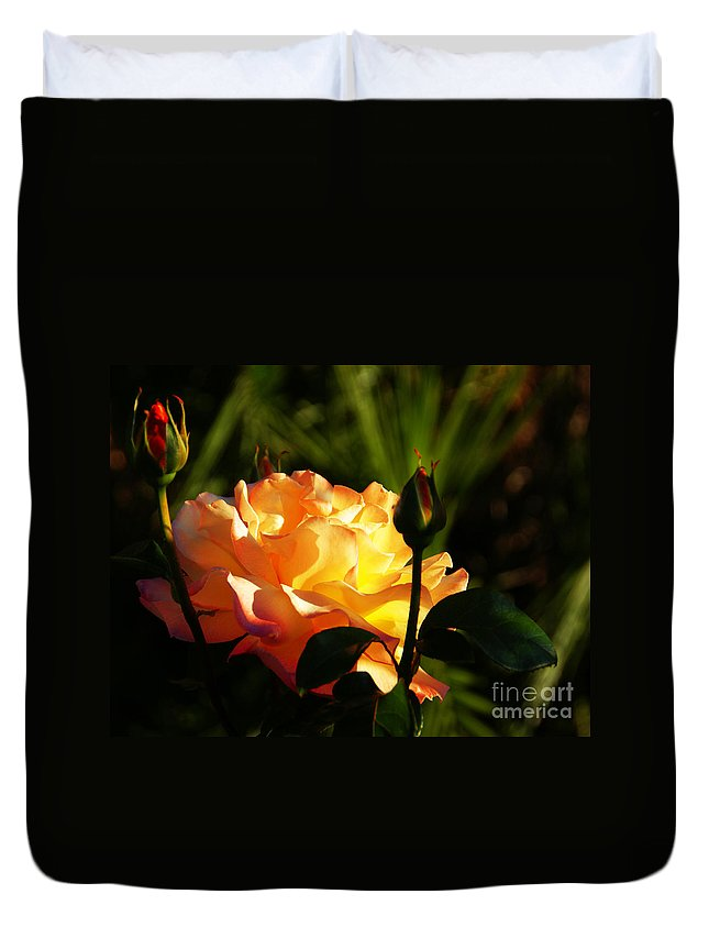 Rose Duvet Cover featuring the photograph Guarded by Linda Shafer