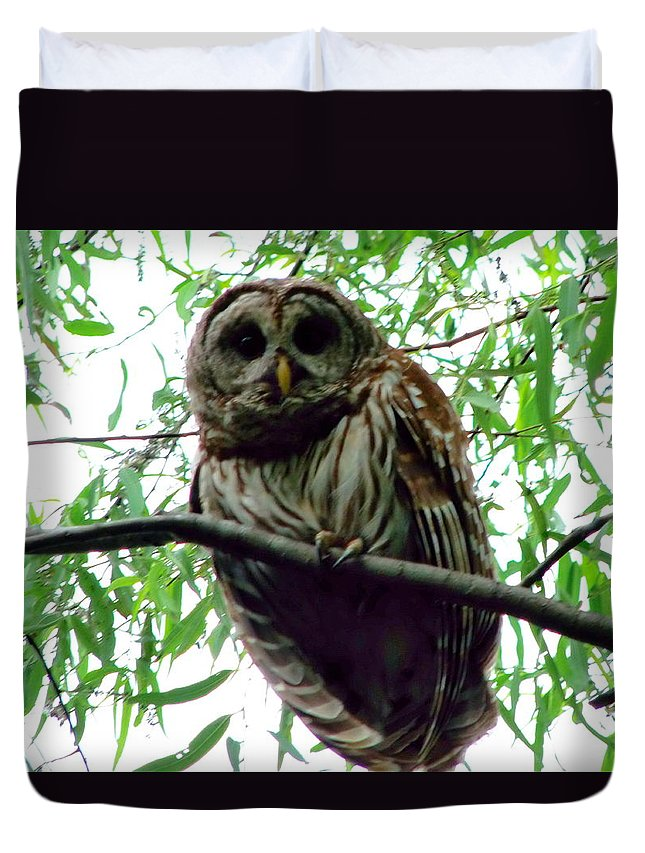 Owl Duvet Cover featuring the photograph Guardian by Gina Welch
