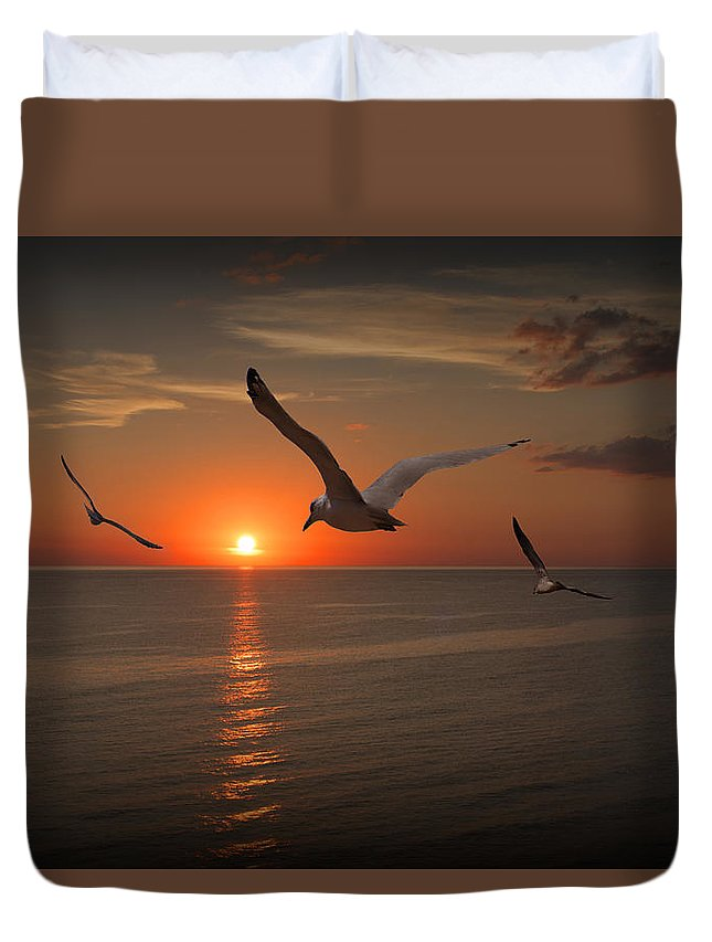 Gull Duvet Cover featuring the photograph Gulls Flying Towards The Sun by Randall Nyhof