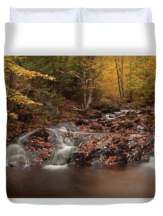Autumn Duvet Cover featuring the photograph Gully Lake Trail Cascades #2 by Irwin Barrett