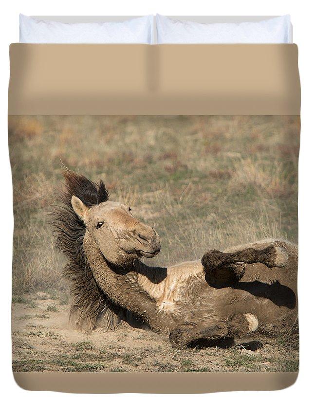 Horse Duvet Cover featuring the photograph Gunsmoke Dustbath by Kent Keller