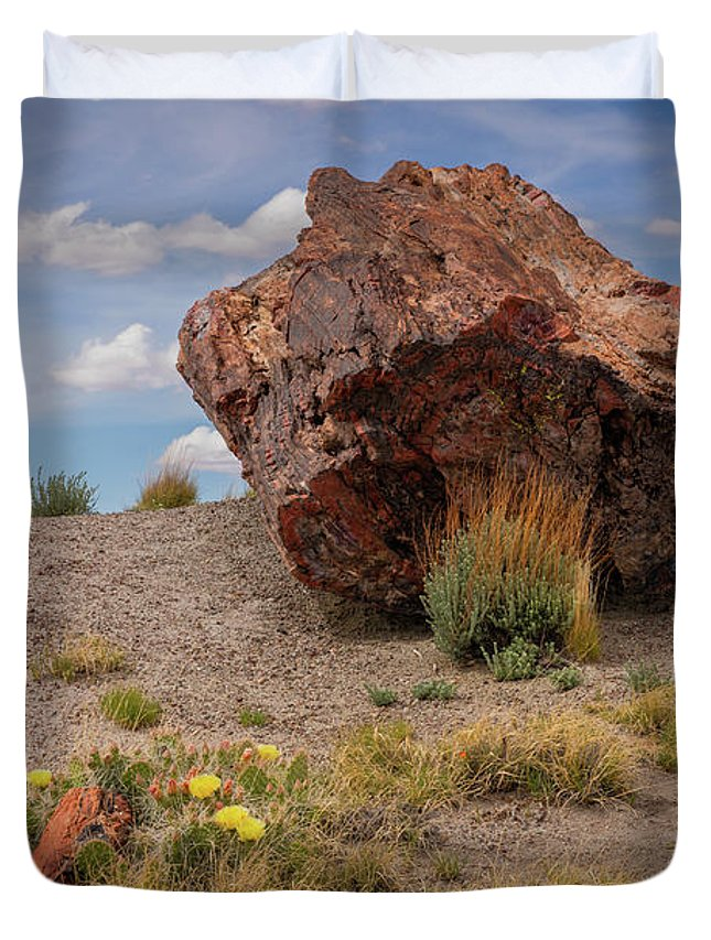 Arizona Duvet Cover featuring the photograph Hair On Fire by Peter Conner