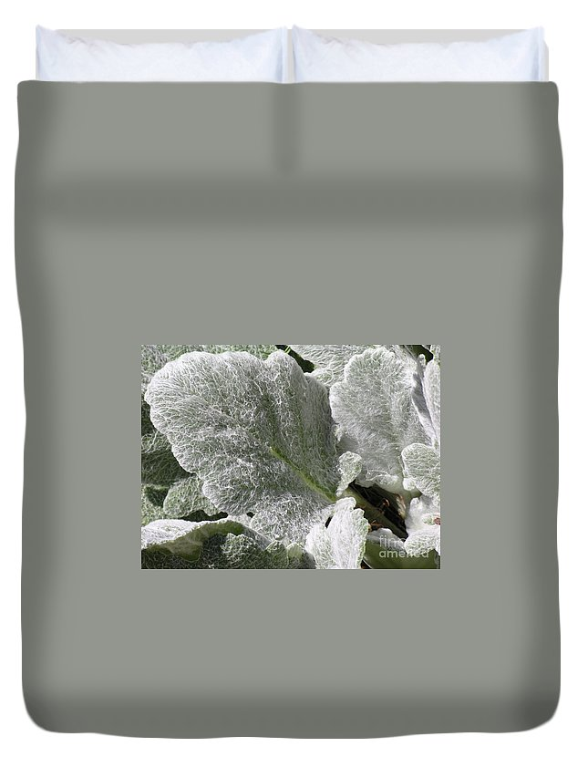 Hairy Duvet Cover featuring the photograph Hairy Leaf by Diane Greco-Lesser