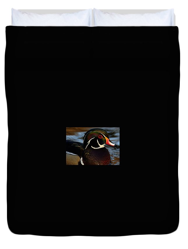 Wood Duck Duvet Cover featuring the photograph Handsome by Randy Hall