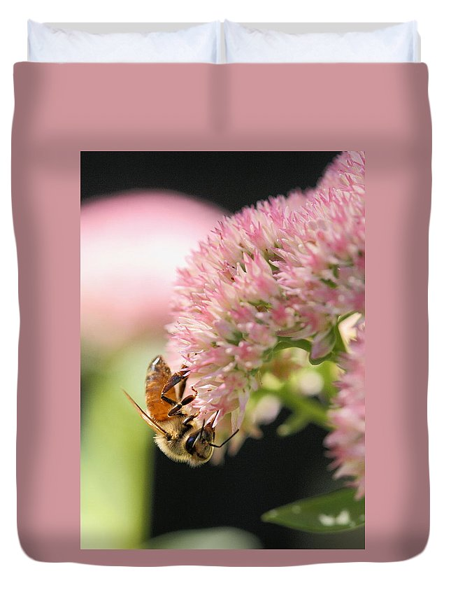 Bee Duvet Cover featuring the photograph Hanging Out by Angela Rath