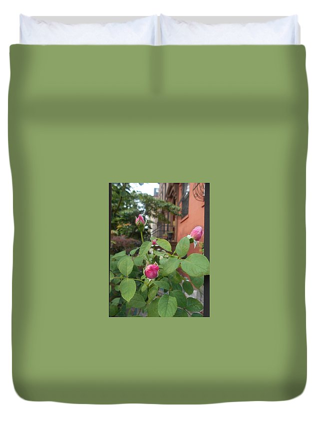 Hanson Place Duvet Cover featuring the photograph Hanson Place Brooklyn Rosebuds by Carolyn Quinn
