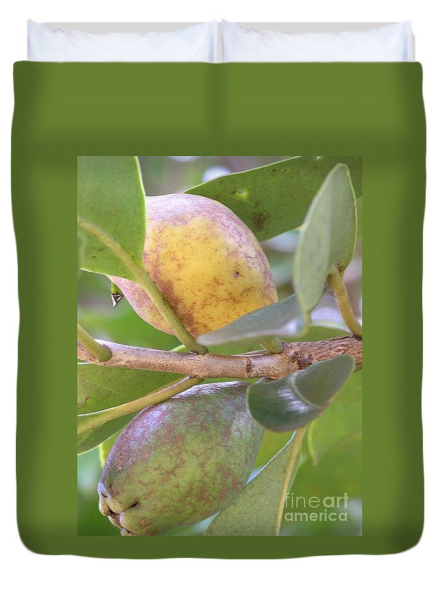 Green Duvet Cover featuring the photograph Haole Guava by Mary Deal