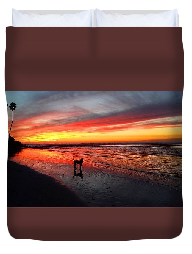 Sunset Duvet Cover featuring the photograph Happy Dog At Sunset by Kevin Grold