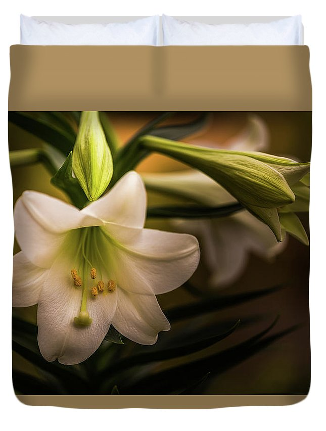 Easter Duvet Cover featuring the photograph Happy Easter- 2 by Calazone's Flics