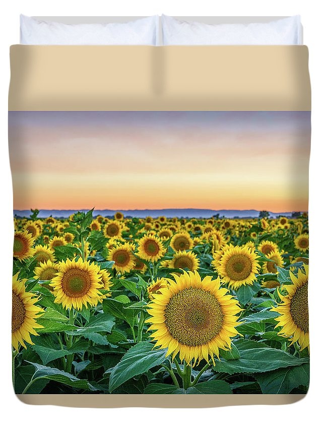 California Duvet Cover featuring the photograph Happy Faces by Greg Mitchell Photography