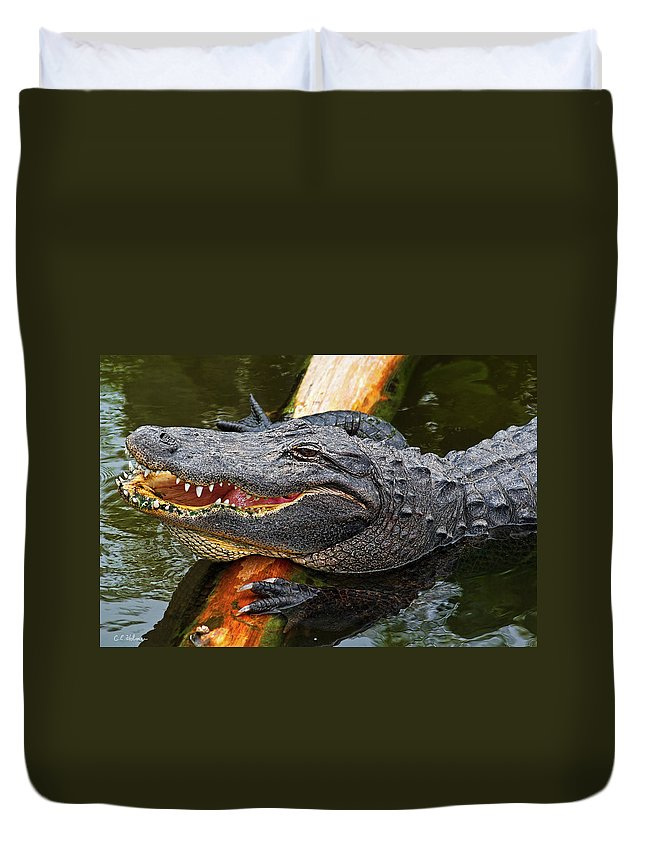 Alligator Duvet Cover featuring the photograph Happy Gator by Christopher Holmes