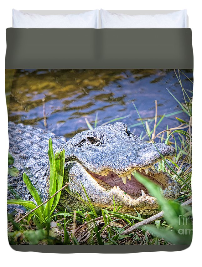 Alligators Duvet Cover featuring the photograph Happy Gator by Judy Kay