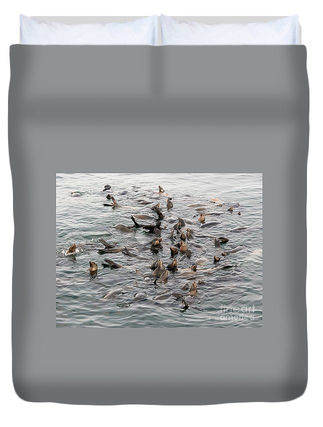 Duvet Cover featuring the photograph Happy Harbour Seals by Carol Groenen