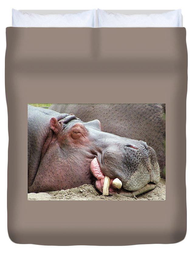 Hippopotamus Duvet Cover featuring the photograph Happy Hippo by Tiffany Vest