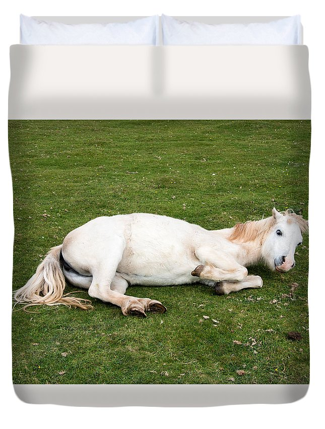 Horse Duvet Cover featuring the photograph Happy Horse by Roy Pedersen