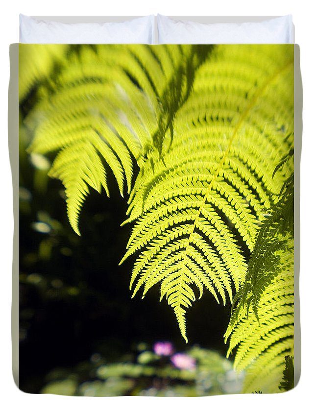 Abstract Duvet Cover featuring the photograph Hapuu Ferns by Ron Dahlquist - Printscapes