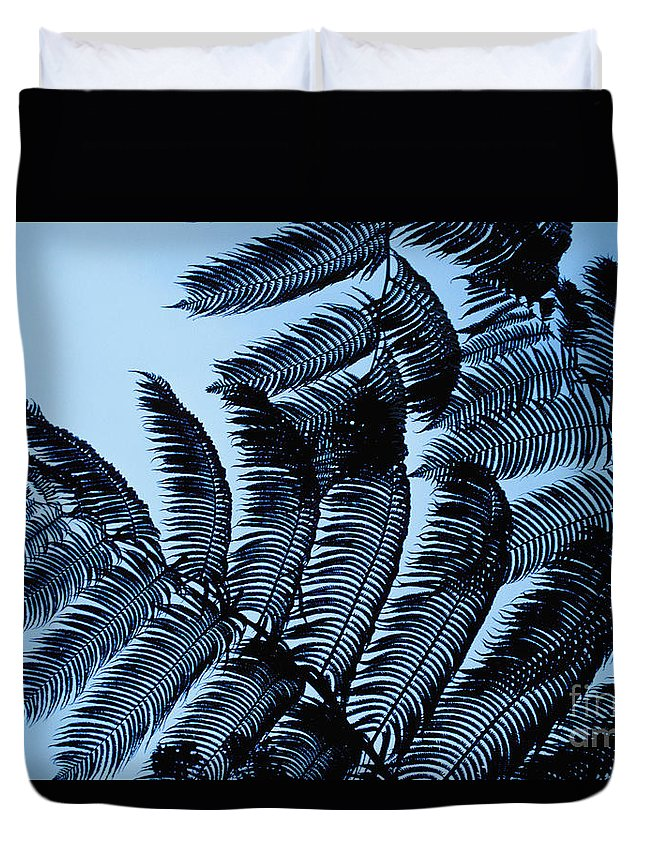 Beautiful Duvet Cover featuring the photograph Hapuu Silhouettes by William Waterfall - Printscapes