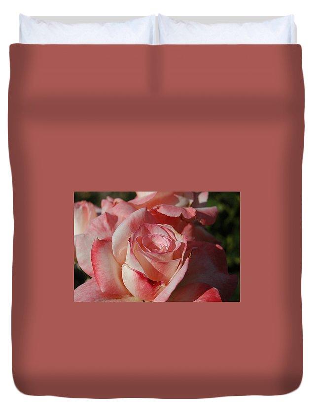 Rose Duvet Cover featuring the photograph Harlekin Rose by Teresa Stallings