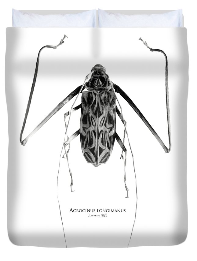 Black-and-white Duvet Cover featuring the digital art Acrocinus I by Geronimo Martin Alonso