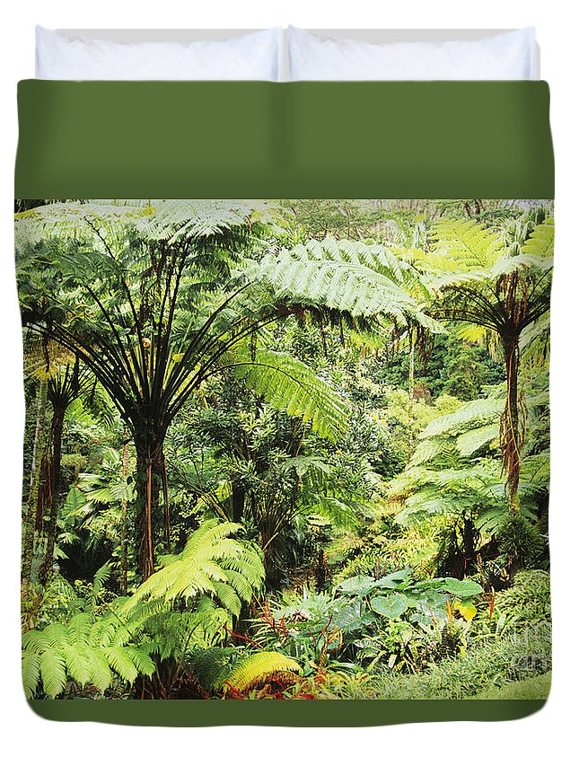 Beautiful Duvet Cover featuring the photograph Hawaii Tropical Rainfores by Dana Edmunds - Printscapes
