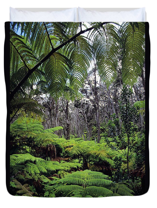Beautiful Duvet Cover featuring the photograph Hawaiian Rainforest by Greg Vaughn - Printscapes