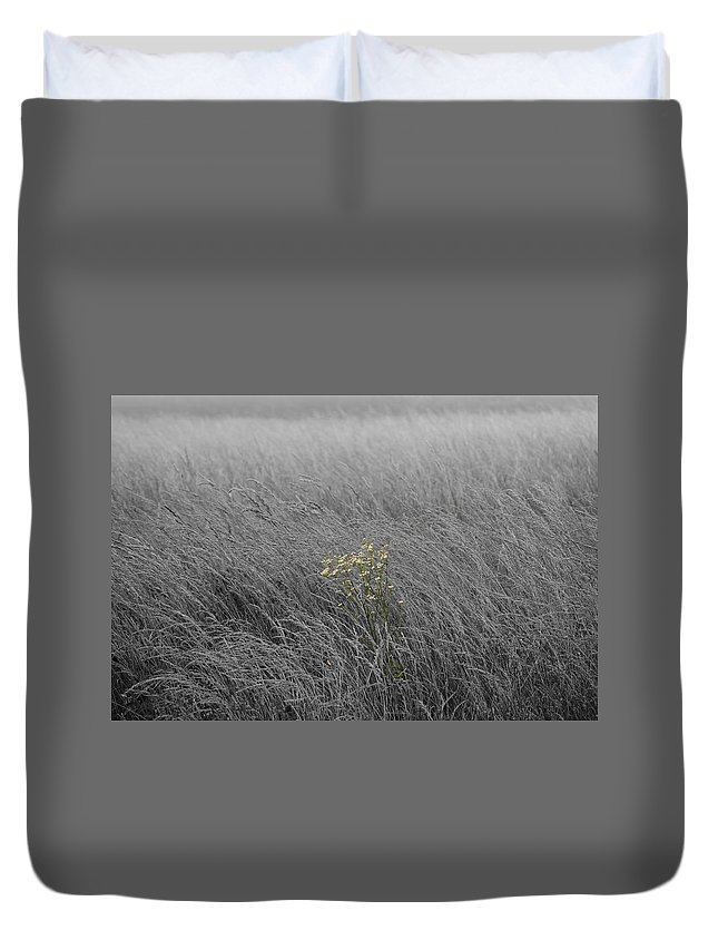 Fog Duvet Cover featuring the photograph Hay Daisy In The Fog by Eric Liller
