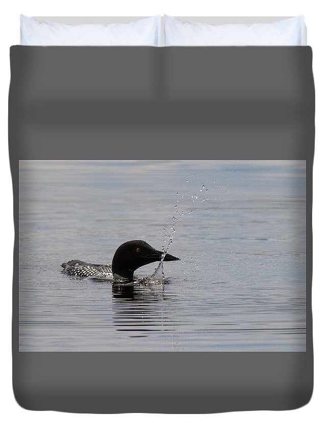 Loon Duvet Cover featuring the photograph Hay Lake Loon 4 by Craig Stoklosar