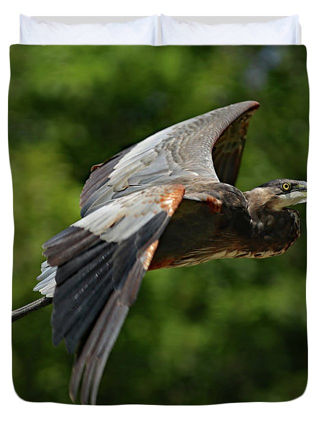 Gbh Duvet Cover featuring the photograph GBH by Steve Bell