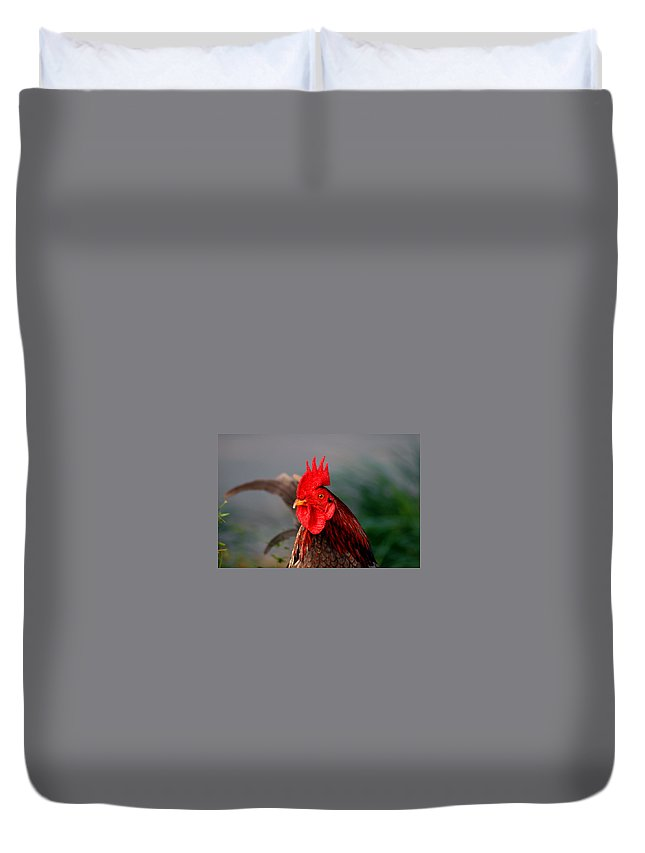 Rooster Duvet Cover featuring the photograph He Is The First In The Morning by Susanne Van Hulst