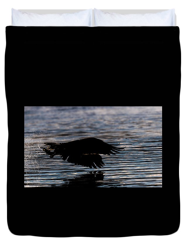 Bald Eagle Silhouette Sunrise Fish Duvet Cover featuring the photograph Heading For Breakfast by David Heemsbergen