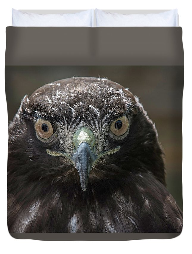 Wildlife Duvet Cover featuring the photograph Hears Looking At You by Duane Deboer