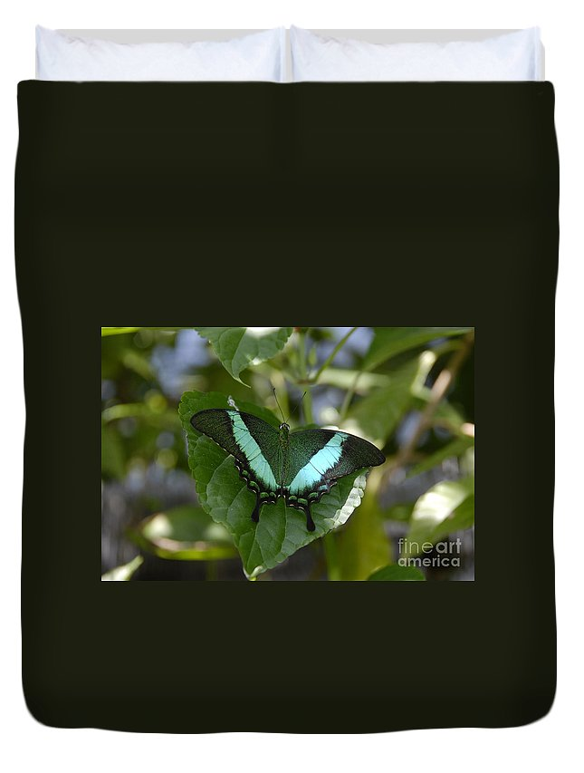 Butterfly Duvet Cover featuring the photograph Heart Leaf Butterfly by David Lee Thompson