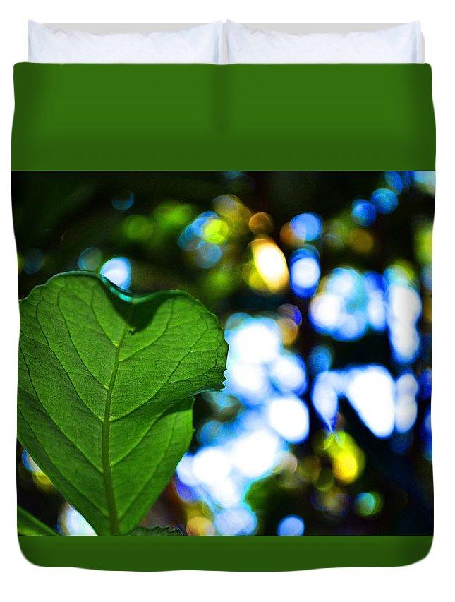 Leaf Duvet Cover featuring the photograph Heart Leaf by Rachel Rutstein