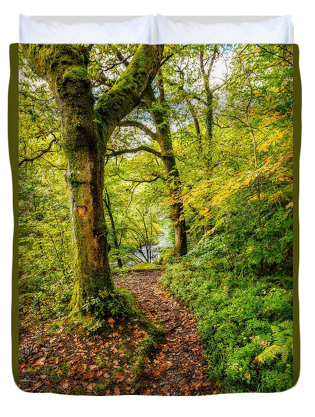 Forest Duvet Cover featuring the photograph Heart Of The Forest by Adrian Evans