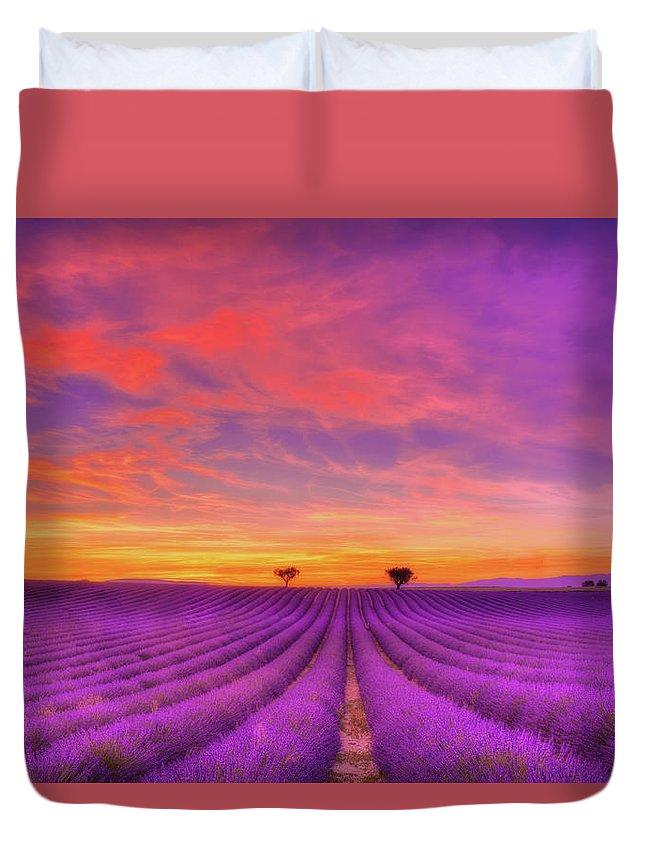 Lavender Duvet Covers