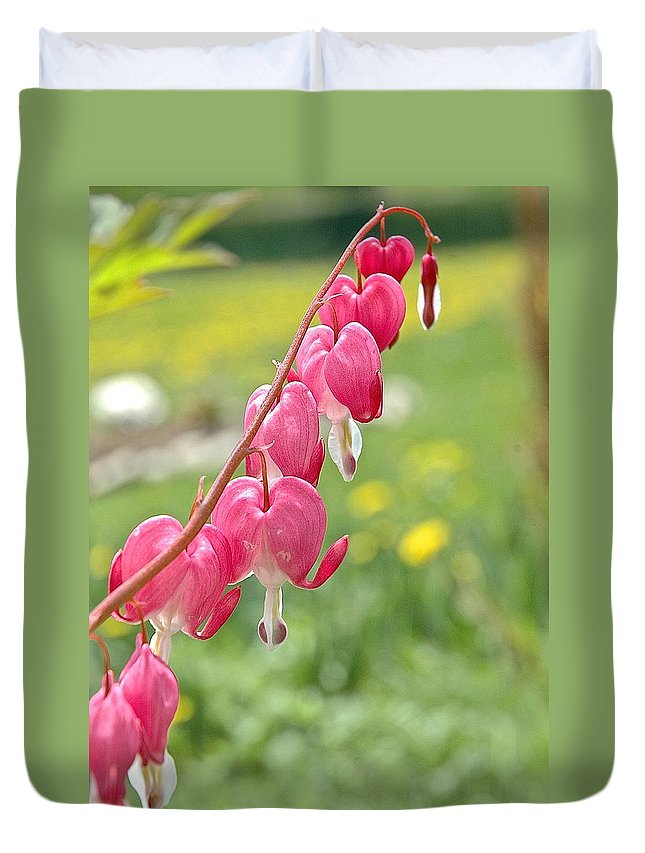 Bleeding Hearts Duvet Cover featuring the photograph Hearts On Line by Danielle Sigmon