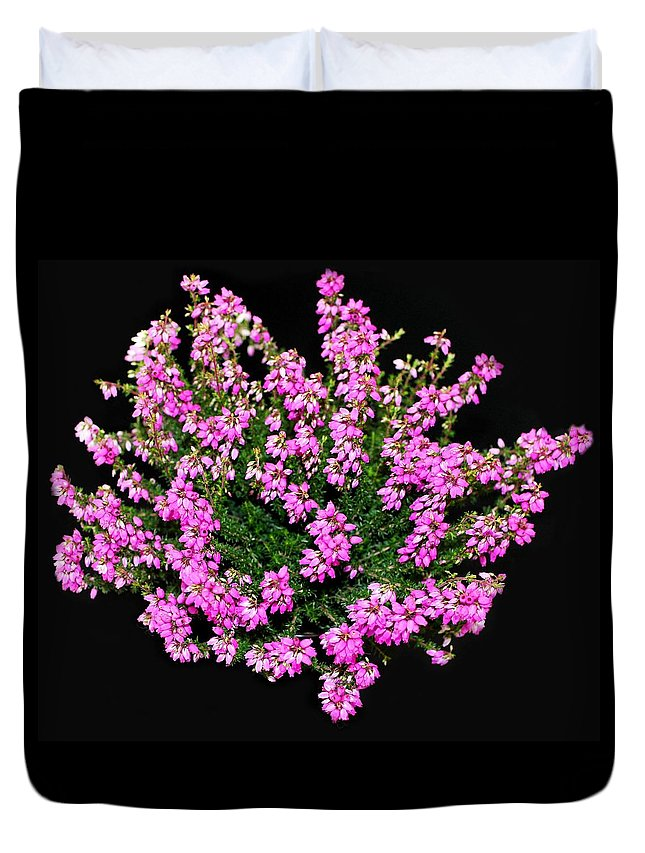 Flower Duvet Cover featuring the photograph Heather by FL collection