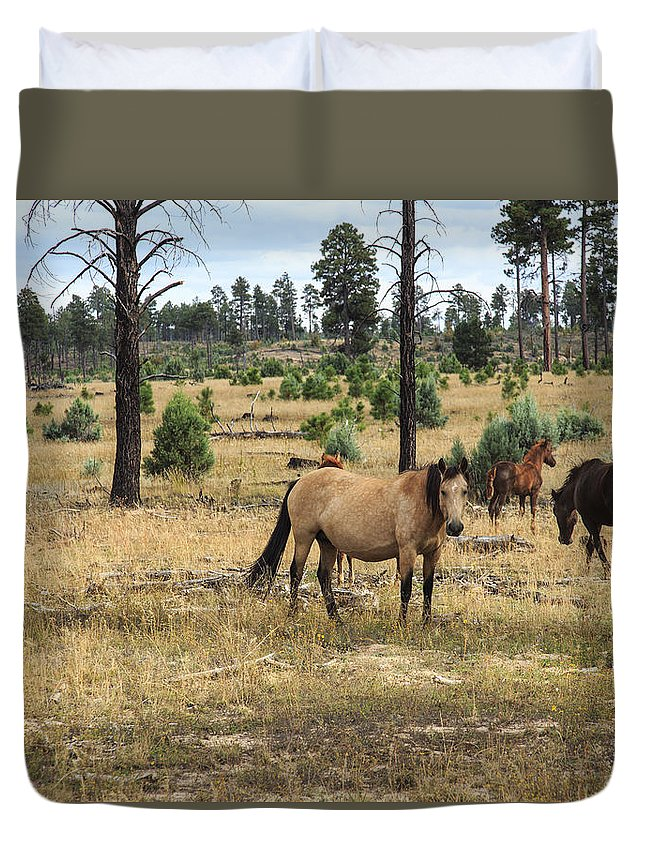 Wild Horses Duvet Cover featuring the photograph Heber Wild Horses 15 by Gary Scott