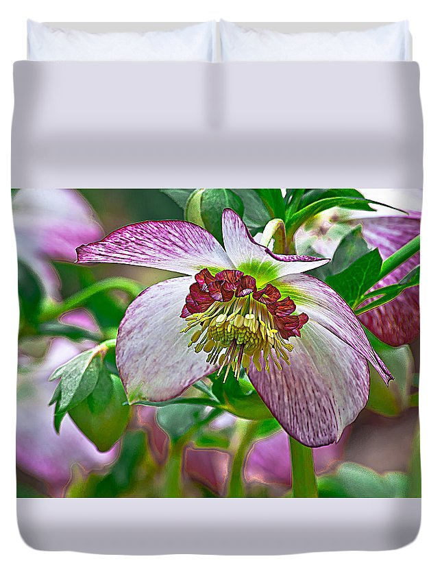 Hellebore Duvet Cover featuring the photograph Hellebore by Emerald Studio Photography