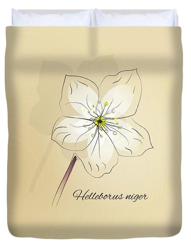 Helleborus Niger Duvet Cover featuring the digital art Helleborus Niger by Silvia Weigert