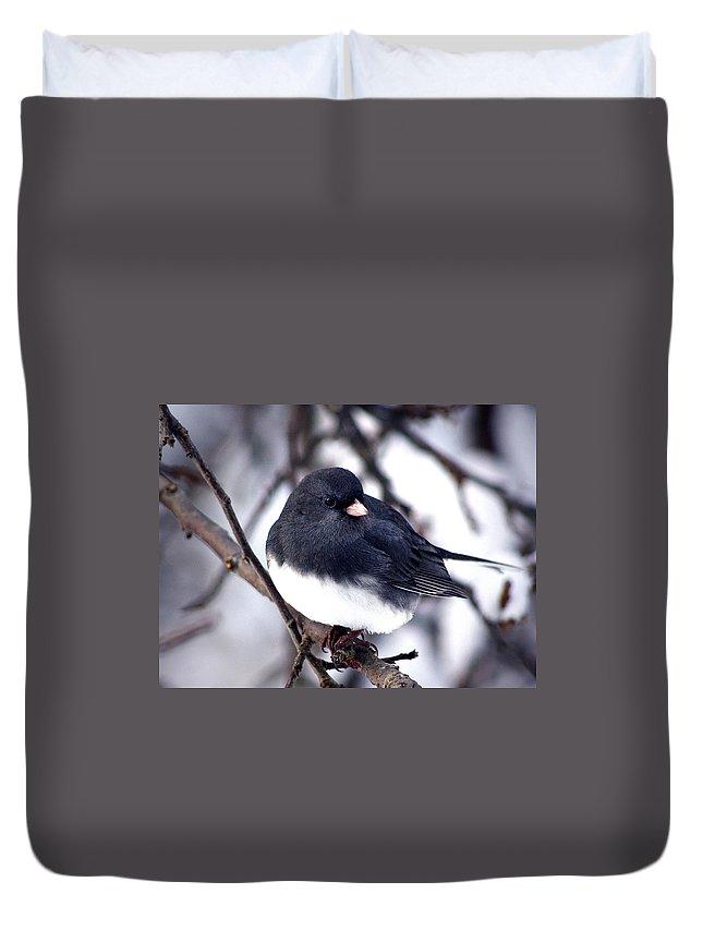 Birds Duvet Cover featuring the photograph Hello... by Arthur Miller