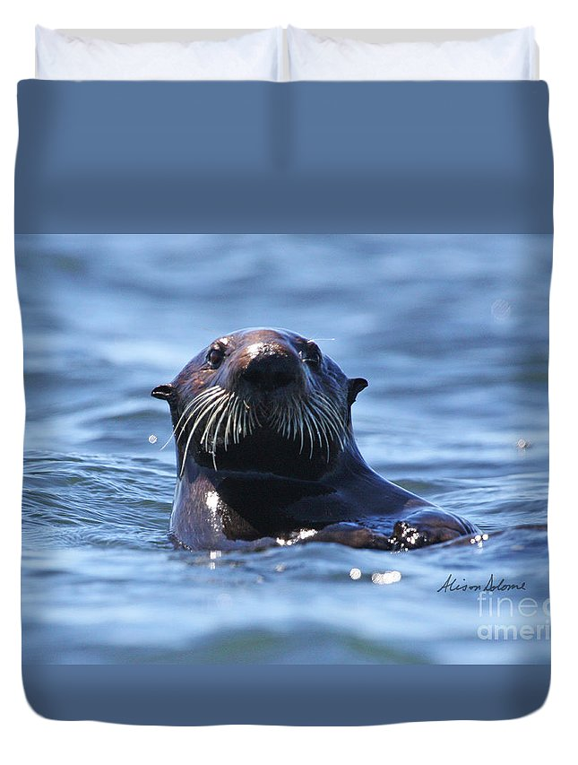 Otter Duvet Cover featuring the photograph Hello There by Alison Salome
