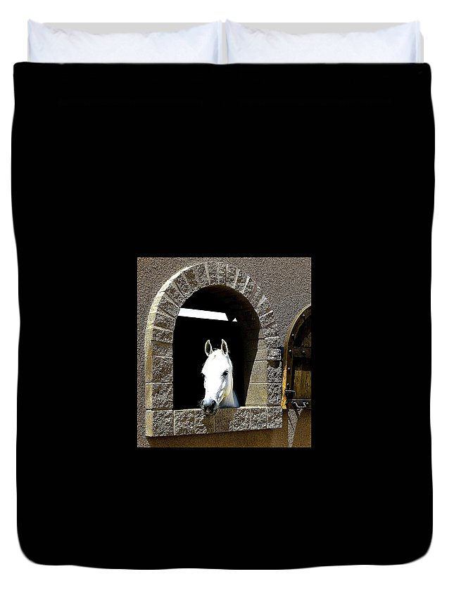 Horse Duvet Cover featuring the photograph Hello You by Barbara Zahno
