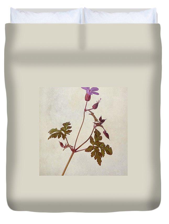 Beautiful Duvet Cover featuring the photograph Herb Robert - Wild Geranium  #flower by John Edwards