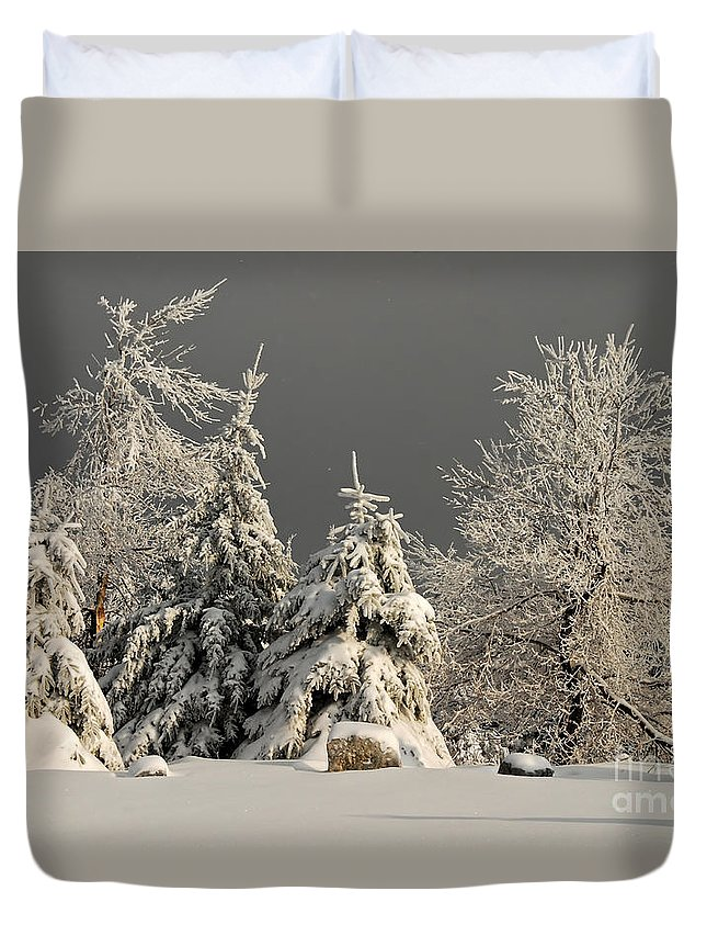 Winter Duvet Cover featuring the photograph Here Comes The Sun by Lois Bryan