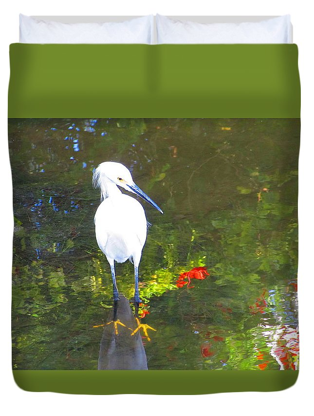 Snowy Egret Duvet Cover featuring the photograph Here Fishy by ChaNooga Annie
