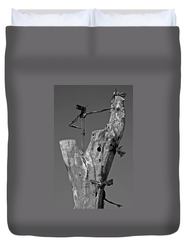 North America Duvet Cover featuring the photograph Here I Am ... by Juergen Weiss