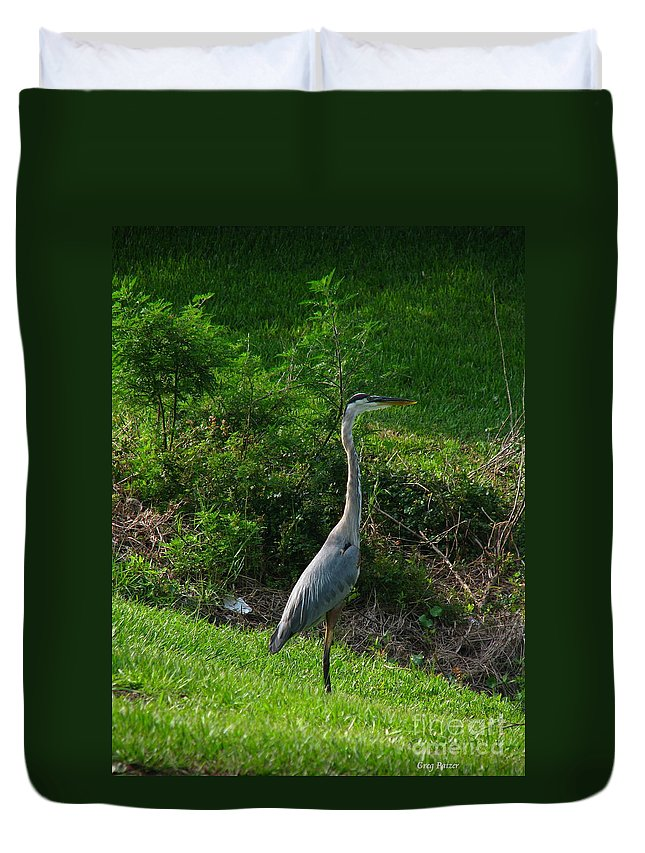 Patzer Duvet Cover featuring the photograph Heron Blue by Greg Patzer