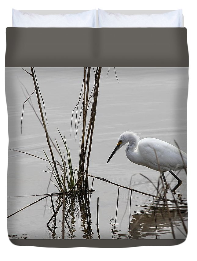 Heron Duvet Cover featuring the photograph Heron Fishing by Jim Clark