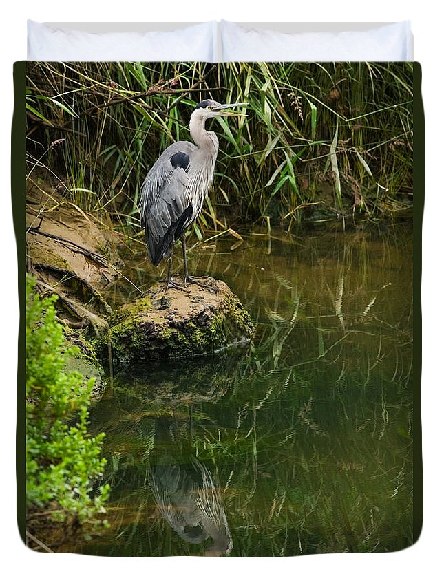 Great Blue Heron Duvet Cover featuring the photograph Heron Reflection by Randall Ingalls